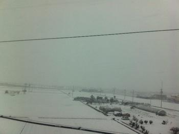 岐阜大雪.JPG
